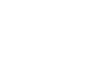 WHite2012 logo small texas with hometownVECTORTRACE